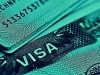 Assistance in obtaining a P-visa in the USA
